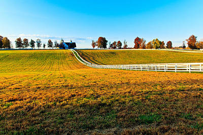 Photograph - Kentucky Thoroughbred Farm by Ben Graham