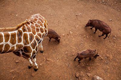 Nairobi Photograph - Kenya by Lucas Vallecillos
