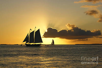 Photograph - Key West Sunset by Olga Hamilton