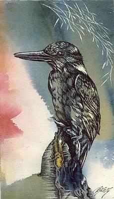 Kingfisher Mixed Media - Kingfisher Drawing by Alfred Ng