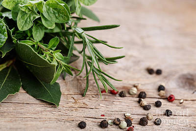 Herbal Photograph - Kitchen Herbs by Nailia Schwarz