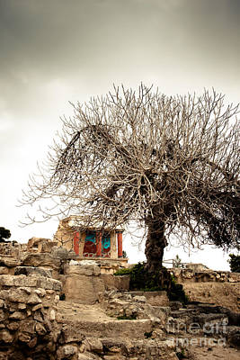 Minoan Photograph - Knossos Archeological Site by Gabriela Insuratelu