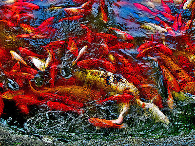 Koi Digital Art - Koi. Next To The Forbidden City. Beijing. China. by Andy Za