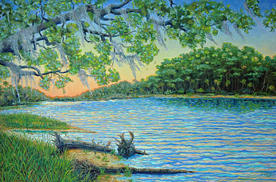 Painting - Lagoon At Hunting Island by Dwain Ray