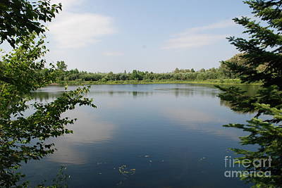 Photograph - Lake At Big Bog Park by Mark McReynolds