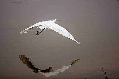 Lake Murray Photograph - Lake Murray, San Diego, California by Michael Qualls