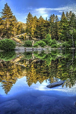 Photograph - Lake Reflections by Maria Coulson