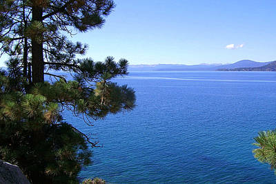 Foliage Photograph - Lake Tahoe 2 by J D Owen