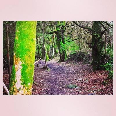 Landscape_lover Photograph - #landscape #landscape_lover by Ross Mc Laughlin