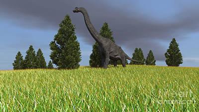 Animals Digital Art - Large Brachiosaurus In An Open Field by Kostyantyn Ivanyshen