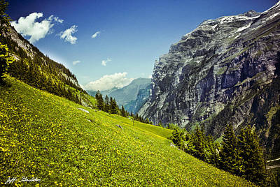 Art Print featuring the photograph Lauterbrunnen Valley In Bloom by Jeff Goulden