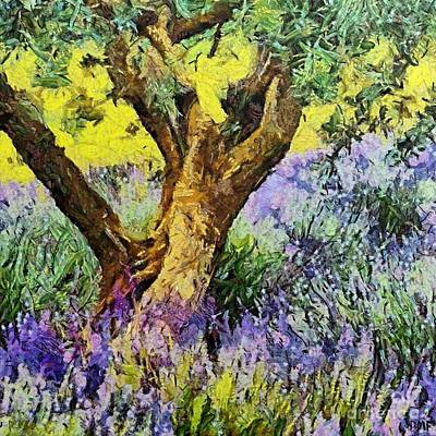 Provence Painting - Lavender And Olive Tree by Dragica  Micki Fortuna