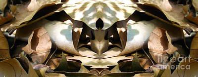 Clarify Digital Art - Leaf On Dune by Predrag Starovic