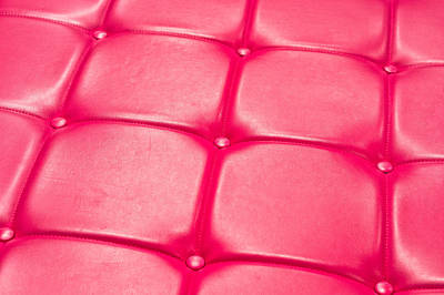Leather Upholstery Art Print
