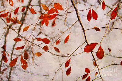 Vivid Fall Colors Photograph - Leaves Of Autumn by Darren Fisher
