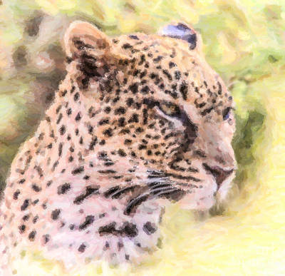 Animals Digital Art - Leopard Portrait by Liz Leyden