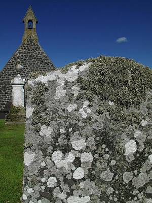 Lichen On Gravestone In Unpolluted Air Print by Cordelia Molloy