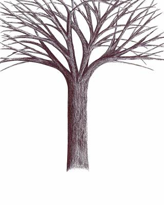 Drawing - Second-generation....tree Without Roots by Giuseppe Epifani