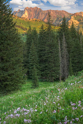 Photograph - Little Cottonwood Canyon Utah by Douglas Pulsipher