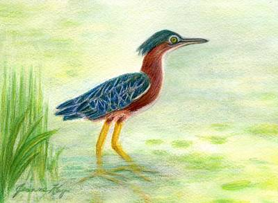 Painting - Little Green Heron by Jeanne Kay Juhos