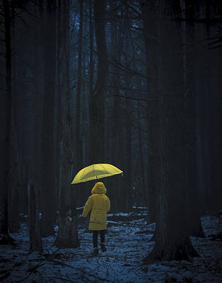 Photograph - Little Yellow Little Riding Hood by Alex Potemkin