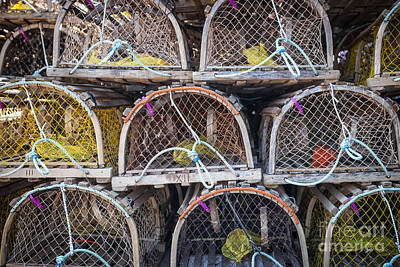 Cage Photograph - Lobster Traps by Elena Elisseeva