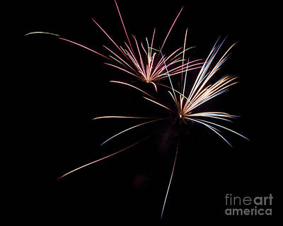 Local Fireworks Art Print by Mark Dodd