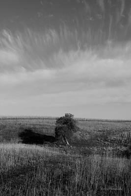 Lonely In The Field Art Print by Robert Geier