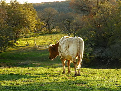 Curated Travel Chargers - Longhorns Long Day by Joe Pratt