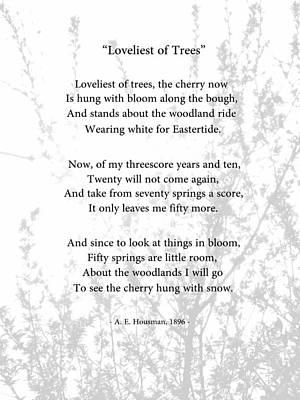 Loveliest Of Trees Art Print by Bishopston Fine Art
