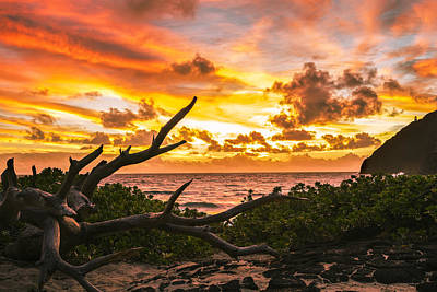 Photograph - Makapuu Sunrise 4 by Leigh Anne Meeks