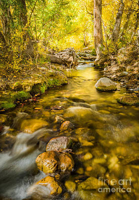 Photograph - Mcgee Creek 5 by Alexander Kunz