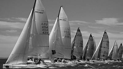 Photograph - Melges Sf by Steven Lapkin