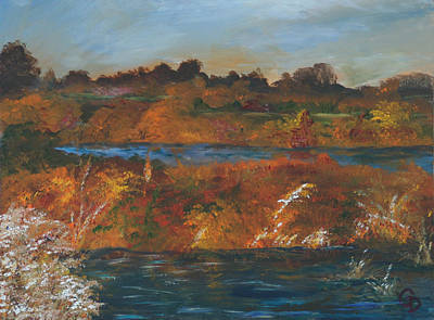 Mendota Slough Art Print by Gail Daley
