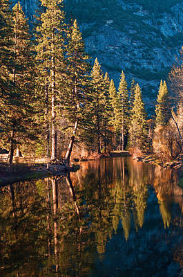 Photograph - Merced River - Yosemite Valley by Dana Sohr