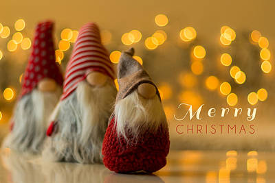 Photograph - Merry Christmas Greeting Card by Aldona Pivoriene