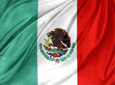 Waving Flag Photograph - Mexican Flag by Les Cunliffe