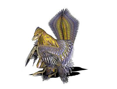 Microraptor Dinosaur Art Print by Friedrich Saurer