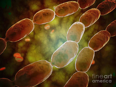 Molecular Biology Digital Art - Microscopic View Of Bacterial Pneumonia by Stocktrek Images
