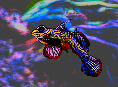 Chum Painting - Modernist Tropical Fish by Bruce Nutting
