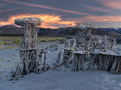 Photograph - Mono Lake Tufa by Leland D Howard