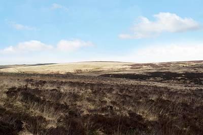 Exmoor Photograph - Moorland by David Aubrey