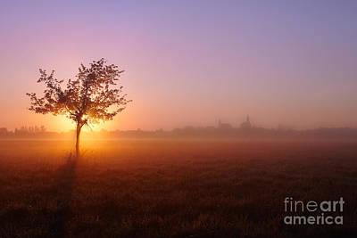 Photograph - Morning Fog by Bernadett Pusztai