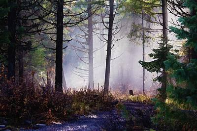 Lanscape Digital Art - Morning Mist by Donna Duckworth