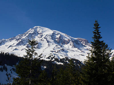 Photograph - Mount Ranier by Leah Palmer