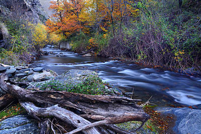 Fore River Photograph - Mountain River by Guido Montanes Castillo