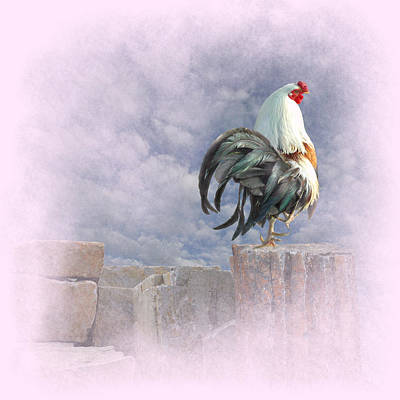 Egos Digital Art - Mr Rooster by Jeff Burgess