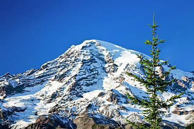 Photograph - Mt Rainier by Albert Seger