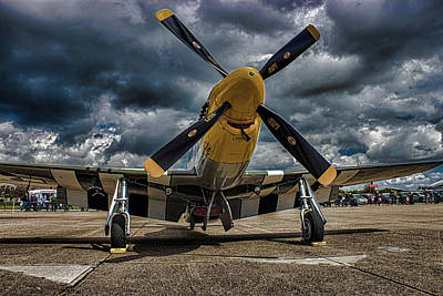 Cockpit Photograph - Mustang by Martin Newman