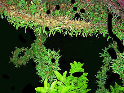 Etc. Digital Art - My Design  by HollyWood Creation By linda zanini